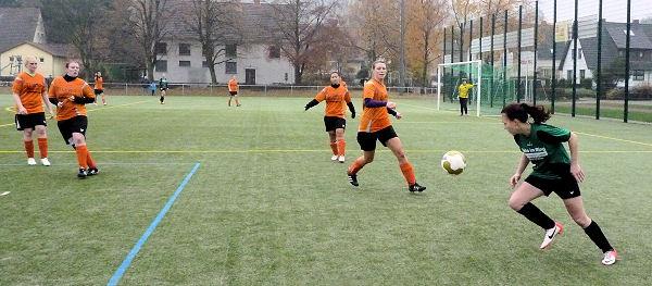 Maja - konzentrierte Arbeit in der Defensive